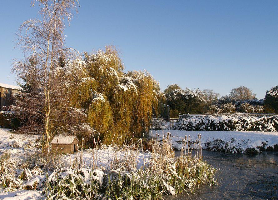 Lower Bassibones in the Winter 2009 & 2010 (129)