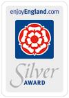 Silver-Award-100