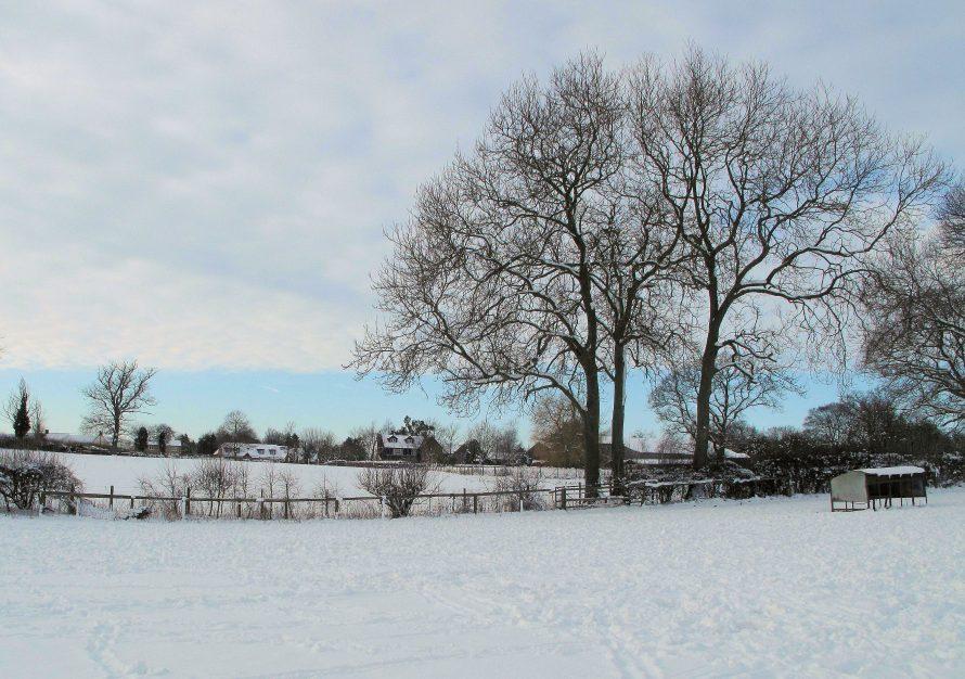 Lower Bassibones in the Winter 2009 & 2010 (105)
